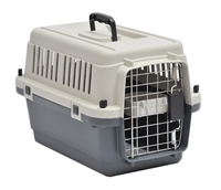 Picture for category Dog Transport