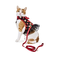 Picture for category Cat Collars & Harnesses