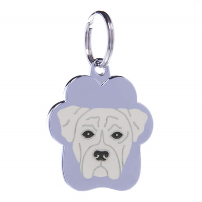 Picture of TAG RAINBOW BOXER  WHITE