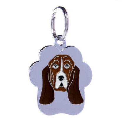 Picture of TAG RAINBOW BASSET