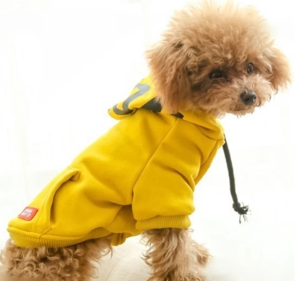 Picture of HOODIE YELLOW XXL