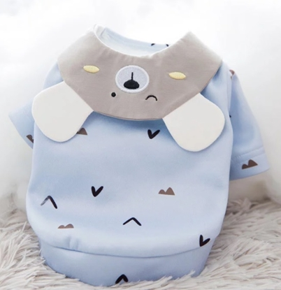 Picture of BEAR BLUE HOODIE