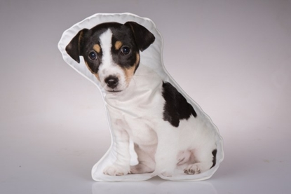 Picture of FOX TERRIER PUPPY CUSHION
